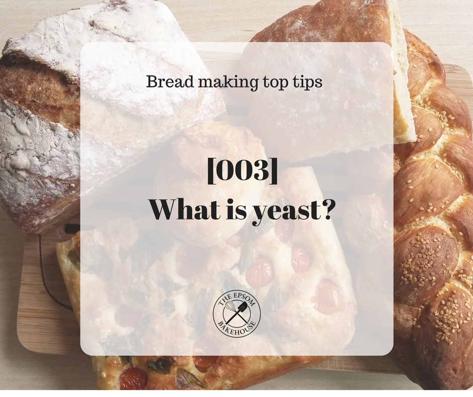 The Epsom Bakehouse what is yeast